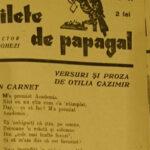 Bilete de papagal Otilia Cazimir